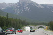 Banff Wildlife Overpass